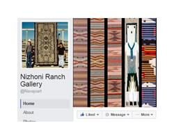 Facebook Status Updates, FB, Google, and LinkedIn advertising campaigns
